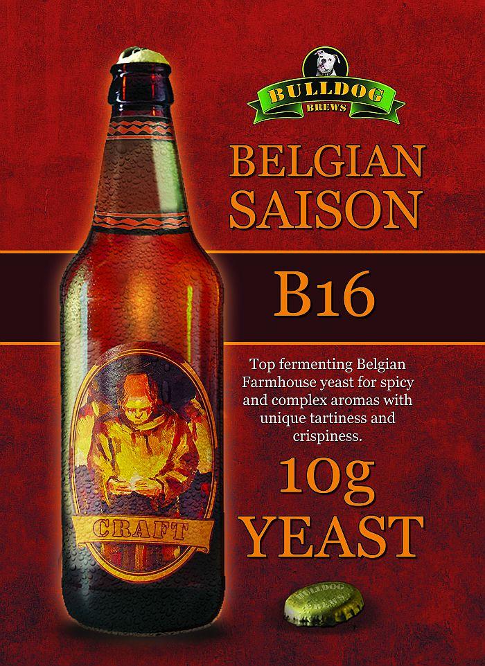 Belgian Saison yeast