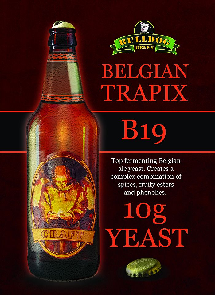 Belgian Trapix beer yeast
