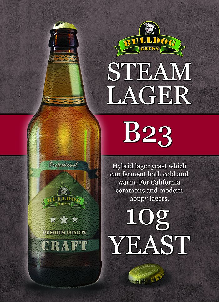Steam Lager yeast